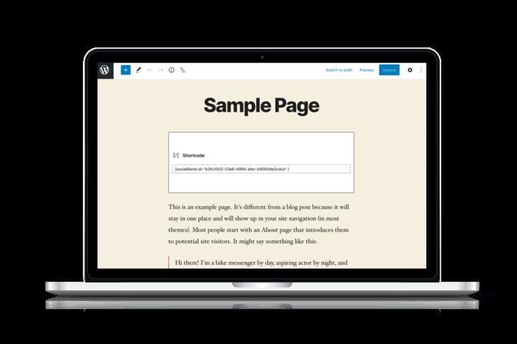 WordPress Plugin settings Social Blend